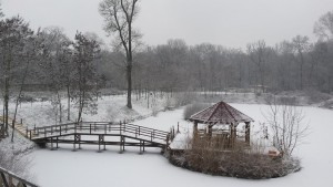 Iarna pe ulita 3