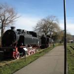 Muzeu locomotive 12