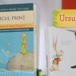 carti pentru copii_16