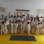 judo phoenix (5)