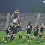 rugby saracens baia mare_10