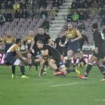 rugby saracens baia mare_11