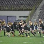 rugby timisoara baia mare_06