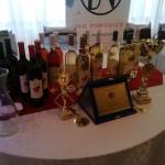 vinofest varset (21)
