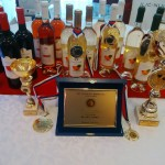 vinofest varset (5)