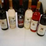 vinofest varset (8)