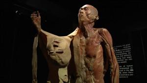 our body expozitie
