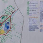Amenajarea unui nou parc în Timișoara prin ochii profesioniștilor în devenire.Still046