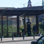 politie cersetori (3)