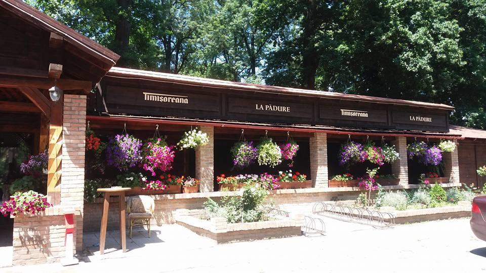 terasa-muzeul-satului-2