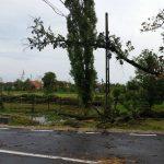 furtuna rachita 17082016 (15)