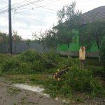 furtuna rachita 17082016 (4)