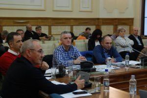 sedinta consiliul local (8)
