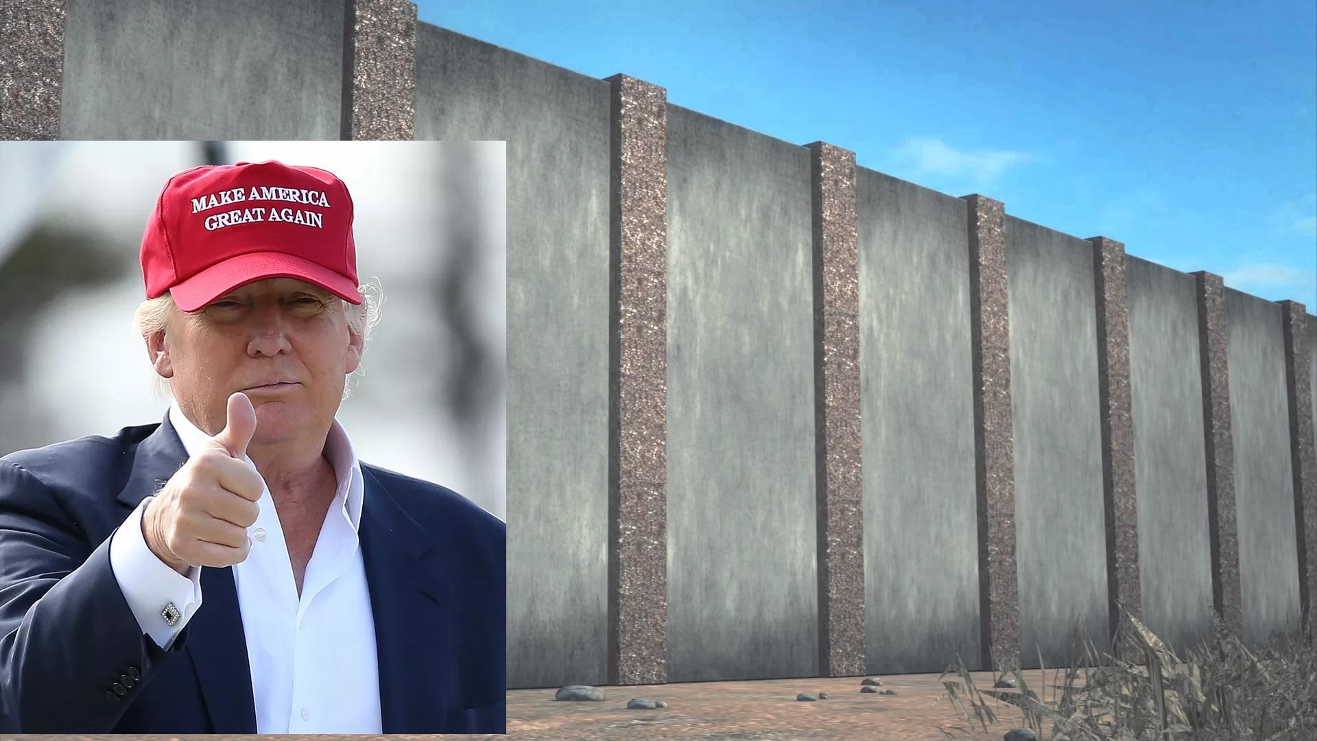 trump-zid