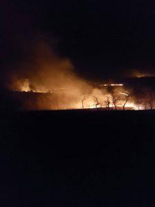 Incendii de vegetatie uscata 1