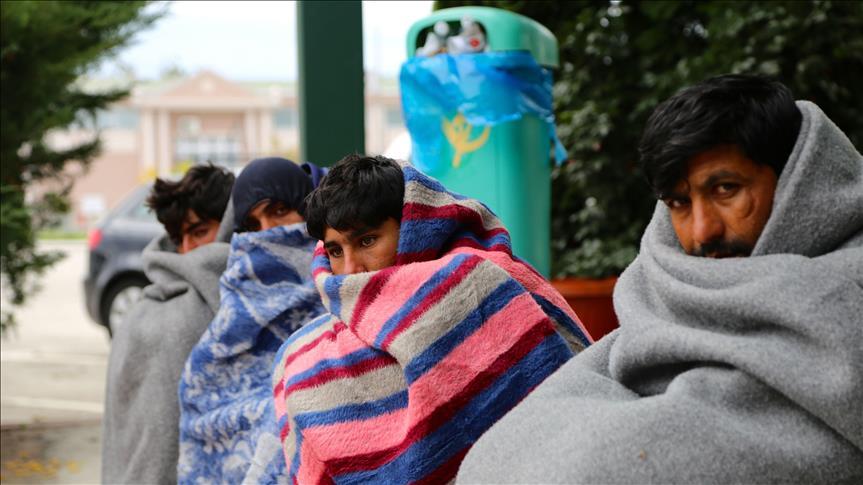 imigranti-iarna