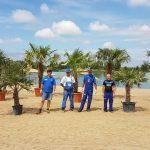 palmieri ghioroc1