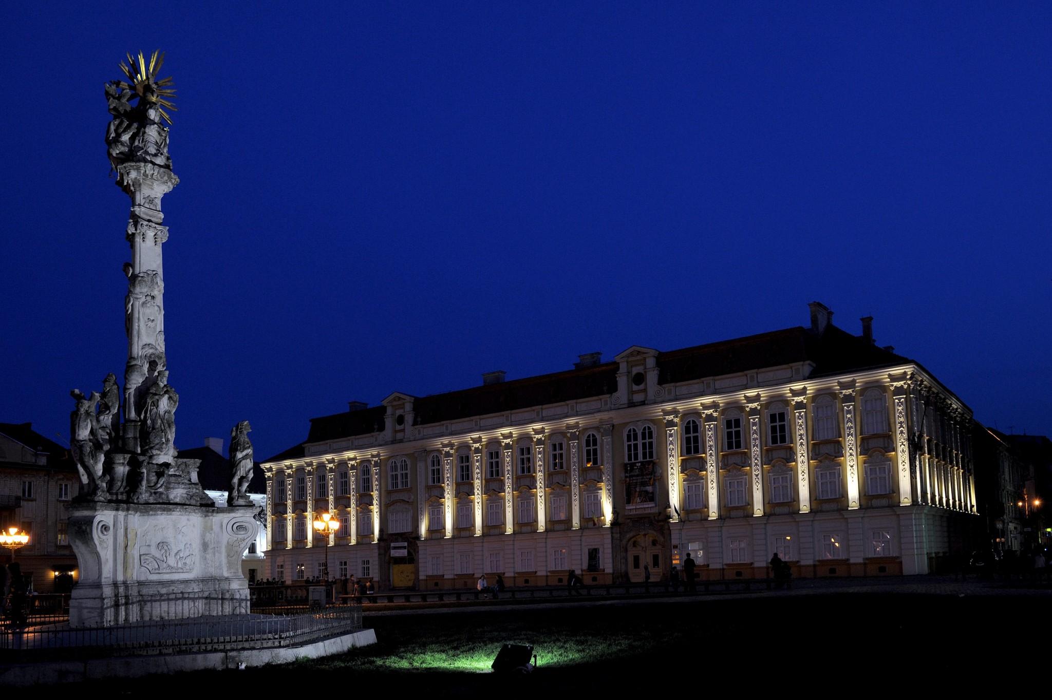 Muzeul de Arta Timisoara (3)