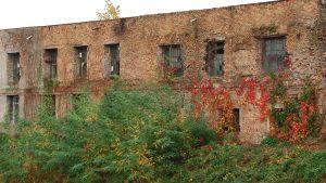 Ruine socialiste mal Bega 4