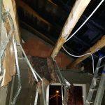 caine incendiu casa giroc (9)