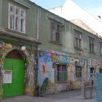 poarta verde primaria veche (4)