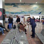 flori 8 martie aeroport (3)